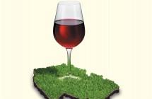Víno&Destiláty 2011