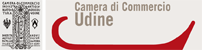 CCIAA UDINE
